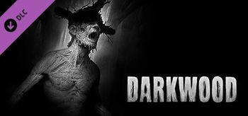 Darkwood Artbook - PC