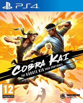Cobra Kai : The Karate Kid Continues - PS4